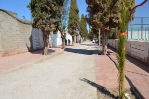 camino cementerio 2